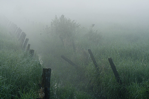 morning mist fog fence dawn ditch langley morningfog 208street kvdl
