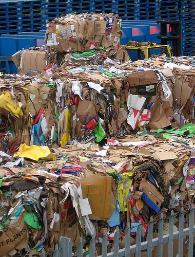 Cardboard at Cribbs