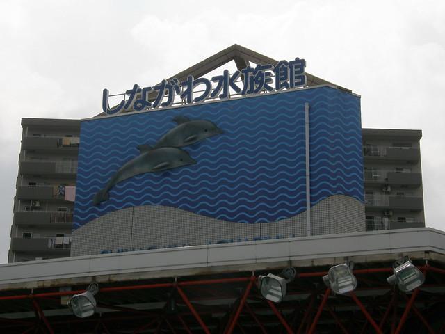 Shinagawa Aquarium (しながわ水族館) #1756