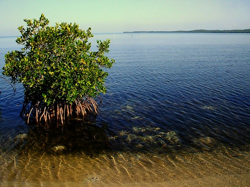 ocean blue sunset vacation sky sun mountain beach water sunrise puerto rico rican turism mangle balneario boqueron