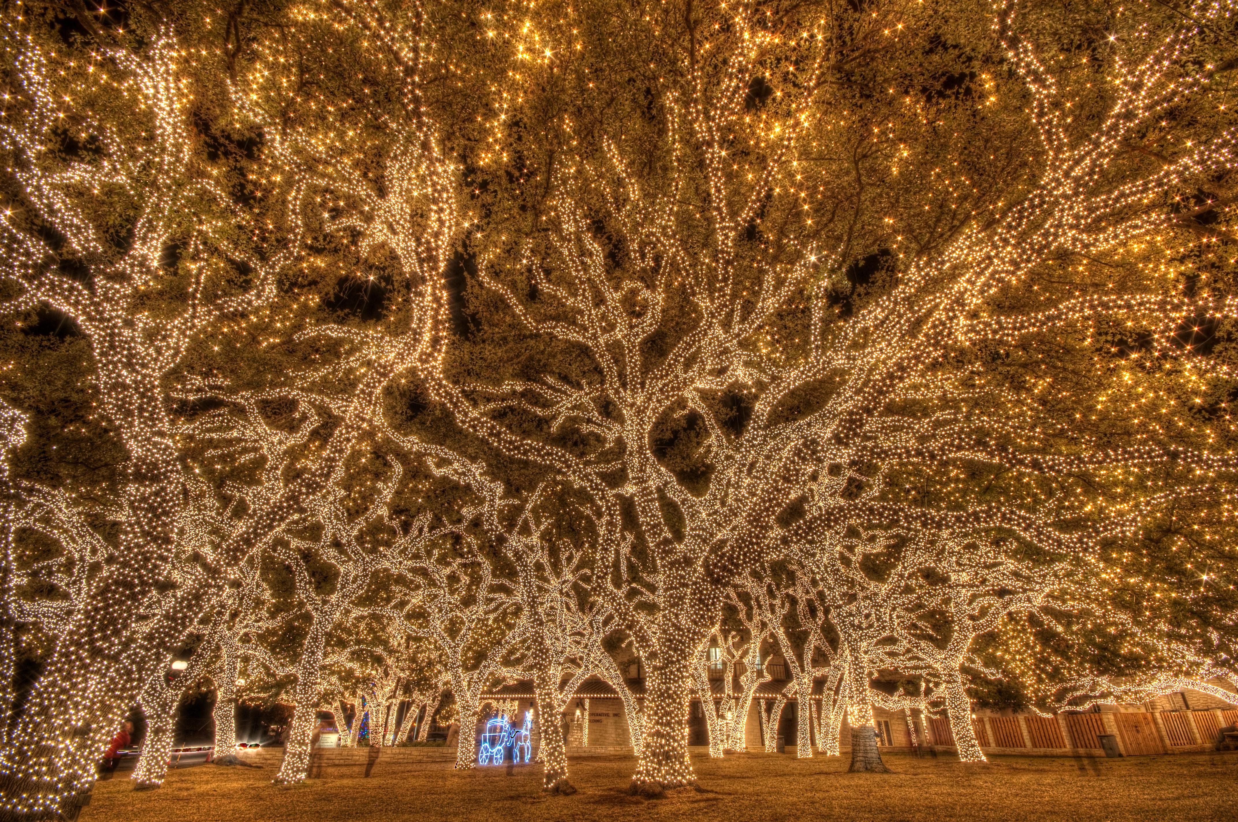 Johnson City Courthouse Christmas Lights