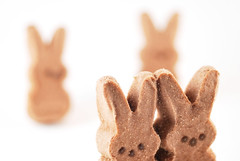 Peeps Chocolate Mousse Bunnies Bokeh I
