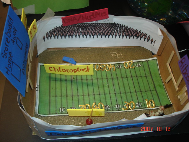Cell City School Project Ideas Cell City Project Ideas For