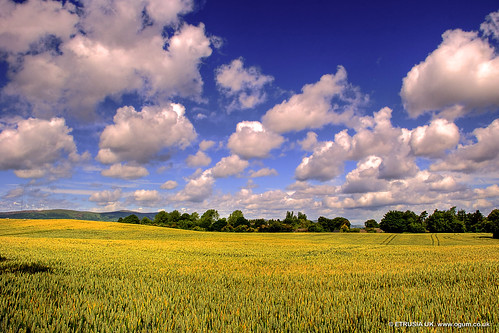 sky clouds landscape geotagged nikon unitedkingdom wideangle bluesky fields northernireland pictureperfect ulster iloveit nikkorlens cloudformations coantrim giantsring nikonlens yellowfields d80 bej 18135mm nikond80 nikkor18135mm platinumphoto skycloudssun nikon18135mm theperfectphotographer absolutelystunningscapes geo:lat=54540991 geo:lon=5948421