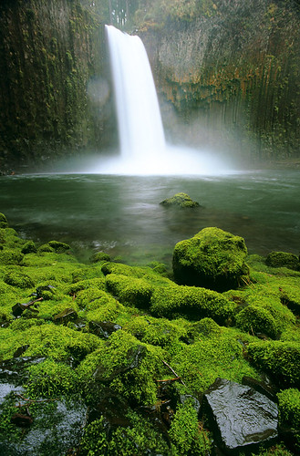 green nature oregon landscape outdoors moss waterfalls pacificnorthwest lush nikonfm2 fujivelvia50 bluemooncamera zebandrews abiquafalls soiendeduppostingaprettylandscapeanyway strangelyafterallthatitseemedappropriate zebandrewsphotography