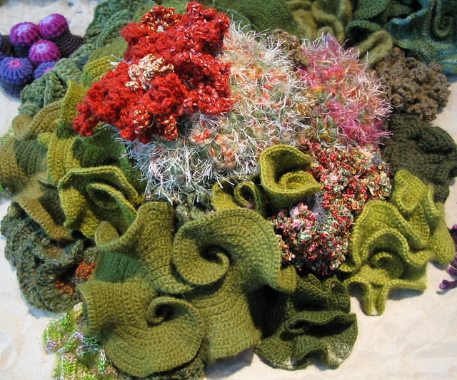 Crochet Coral Reef : Hyperbolic Crochet Coral Reef Flickr - Photo Sharing!