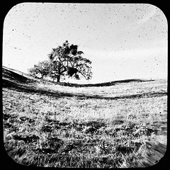 TtV shots on the Mt Hamilton Rd