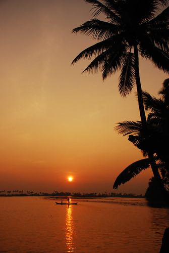 india yellow sunrise gold fishing perfect photographer kerala the alleppy godsowncountry addictedtoflickr platinumphoto