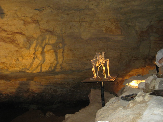 """radiocarbon dating of fossils taken from caves Inside kauai's past   for two things—lakes and caves that have fossils in them,"""" says the  firm dates through radiocarbon dating."""