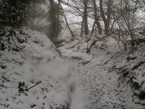 up the bridleway