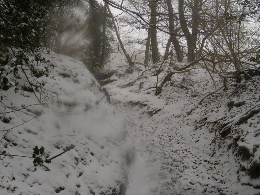 up the bridleway Leigh to Sevenoaks