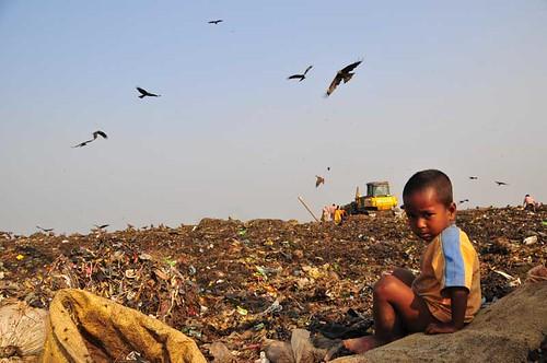 dump workers (71)