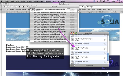 Screenshot of Download All Images or Files in Safari Page.