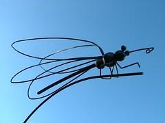 le papillon / the buttterfly