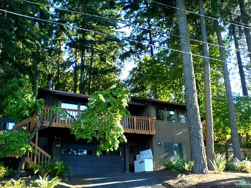 home for sale in lake oswego   DSC01463