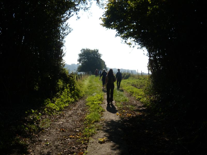 Into the open Wadhurst circular