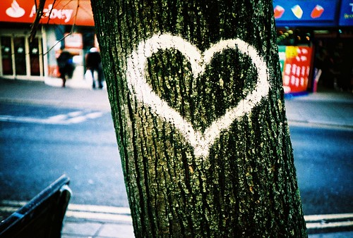 the tree of love