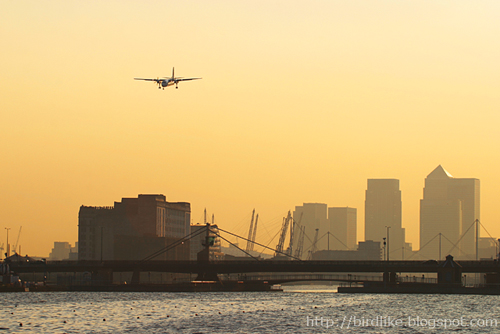 Regional airliner landing at London City Airport