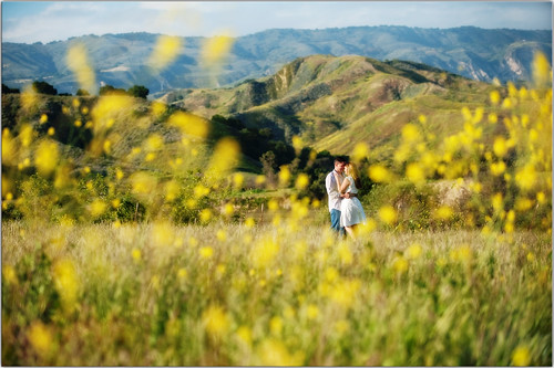 sunset field engagement couple jeremy carly ventura aaaachew