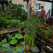 Northeastern Permaculture Convergence, Summer 2008 by bert_m_b