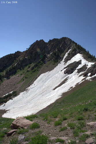 utah mountainview snowbasin needlesbowl