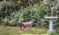 Red Wheelbarrow Retired