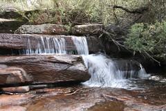 Waterfall in Kuringai National Park