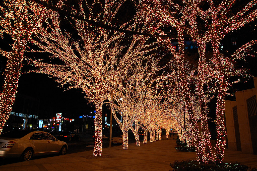 christmas seoul photo