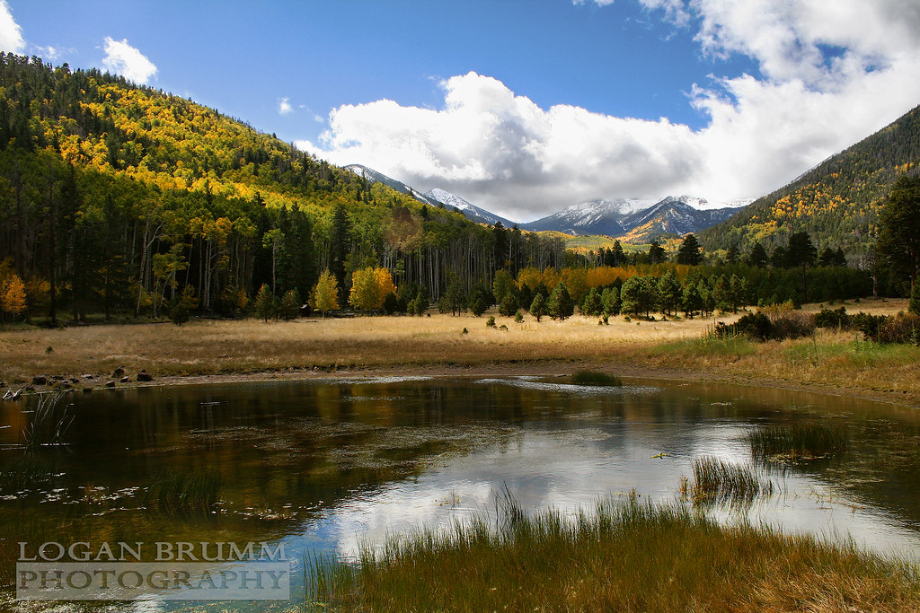 Lockett Meadow, Flagstaff Arizona