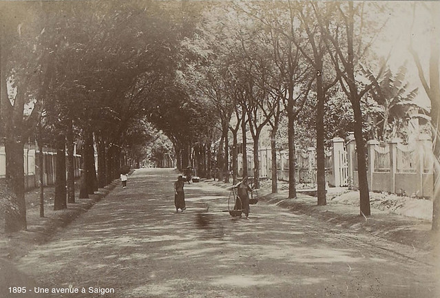 1895 - Một đại lộ ở Saigon