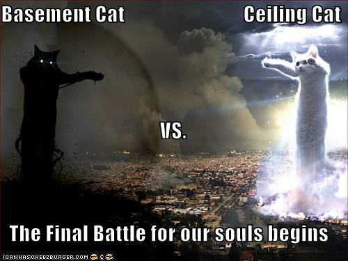 CEILING CAT VS BASEMENT CAT