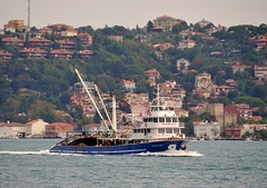 """Isiklar 4"" returns to Istanbul after fishing on the Black Sea, Bosphorus, Turkey, 20 September 2008"