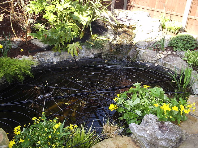 Spiderweb pond guard sculpture flickr photo sharing for Garden pond guards