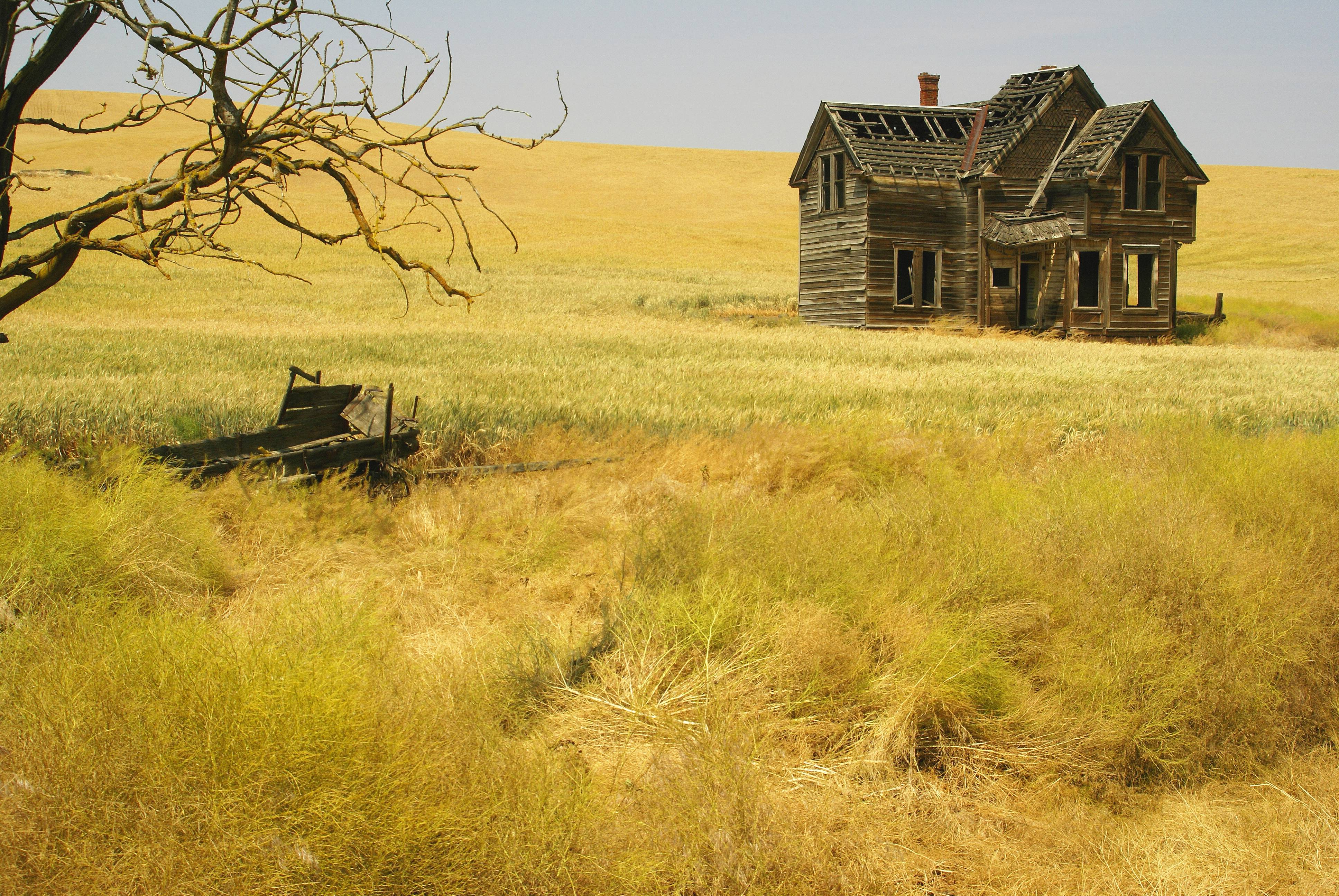 how to become a house appraiser in oregon