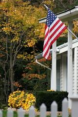 Flag and foliage