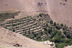 Amsouzerte 2007/11 Morocco