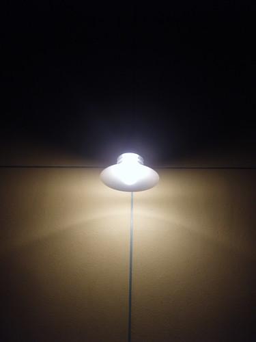 """california winter light sonoma santarosa winterlight """"santa light"""""""