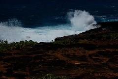 Kauai 155