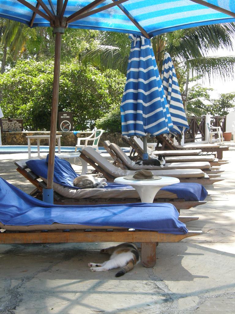 Nyali Beach Hotel