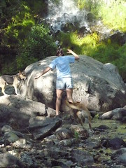 Mossprae Falls 081