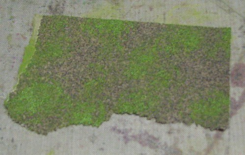 Sandpaper & Dabbers004