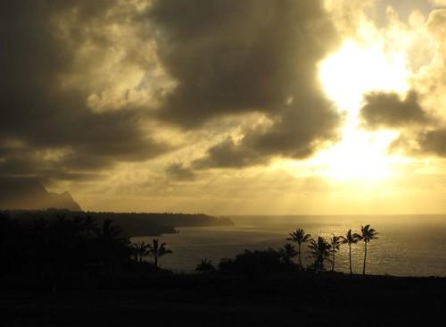 kauai, sunset, sunrays, palm, trees, silhou… IMG_5538