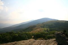 Roan Mountain Grassy Highlands Trek