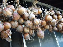 chestnut(1.0), vegetable(1.0), onion(1.0), shallot(1.0), plant(1.0), produce(1.0), food(1.0),