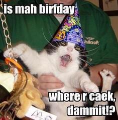 Birthday_LOLCat