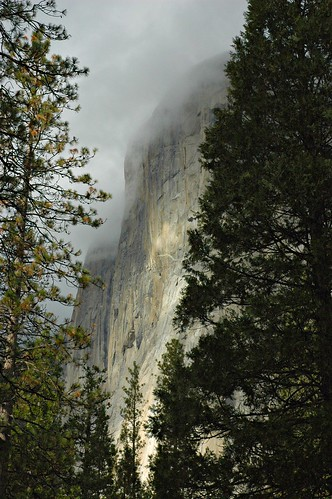 Clouds on the rock faces of Half Dome, between the stunning trees, Yosemite national park by Wonderlane
