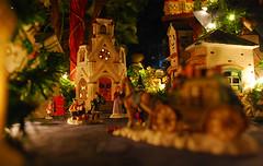 holiday(0.0), christmas tree(0.0), nativity scene(0.0), tree(1.0), christmas decoration(1.0), night(1.0), lighting(1.0),