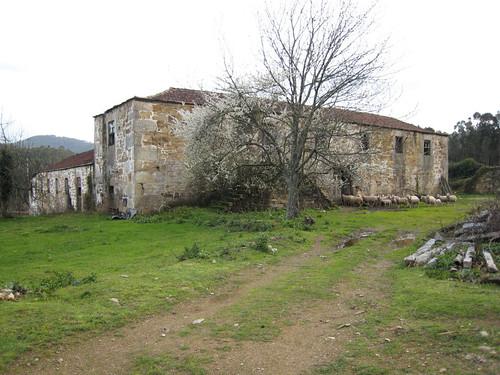 Castelo de Paiva 2008-03-09 016