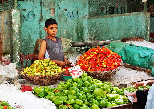 Chili Boy - Cairo, Egypt