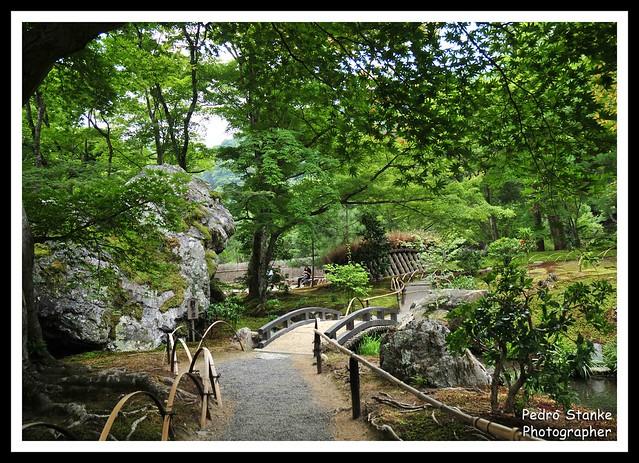 Japonese garden 2 - Arashiyama Park, Kyoto, Japan